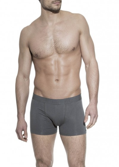 BOXER BRIEF STEEL GREY