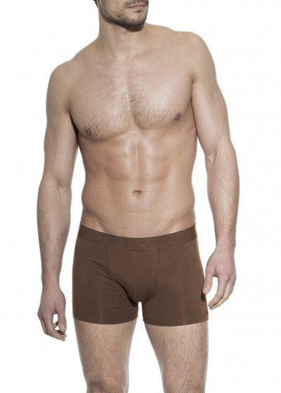 BOXER BRIEF BROWN